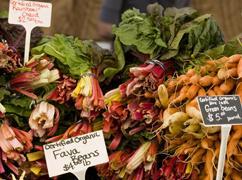 public://farmers-market.jpg