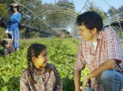 public://urban-argriculture_0.jpg